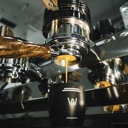 Café de especialidad - Waycup